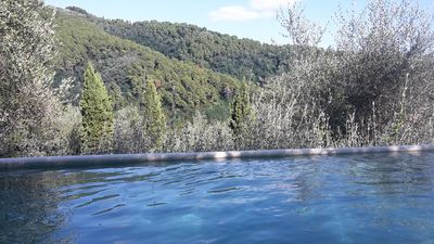 Photo for Swimming pool and garden on a hillside house, among the olive trees, ideal for bimb