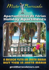 Photo for Mister Barracuda Holiday Apartment IV