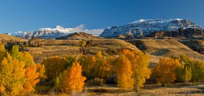 Photo for Wapiti Bear Den - Cozy Guest House With Amazing Views On The Road To Yellowstone
