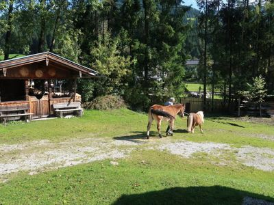 Photo for Vacation home Huberhof (WIL105) in Oberau - 4 persons, 2 bedrooms