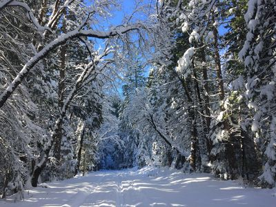 Great road for hiking, snowshoeing or XC skiing - walking distance. Dec 2015