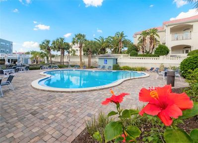Fun in the Sun at the Pool - Swimming in the pool is one of the best parts of a vacation. Head over to the Hibiscus Resort community pool and have some family fun!