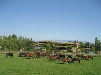 Photo for Casa Guadarnes, ideal families and groups, 8-14 people