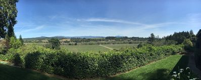Panoramic view of Dry Creek Valley