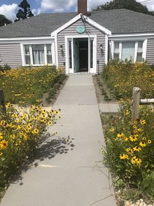 Across From Craigville Beach, Immaculate Newly Renovated Year Round Beach House