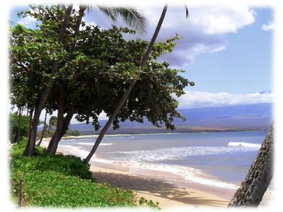 Photo for Gorgeous Oceanfront Complex on Maui! Kanai A Nalu from $190, with free parking!