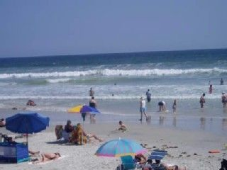 Our beach is on the no drive beach in New Smyrna Beach