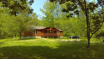 Grey's Getaway Cabin# 3 pet friendly , Finger Lakes, Fun In the Snow cabin!