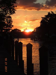 Photo for Discover -  Explore -  Experience... Sanibel