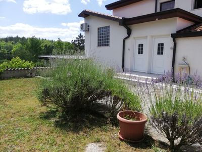Photo for Two bedroom apartment with terrace Buzet, Central Istria - Središnja Istra (A-17562-a)