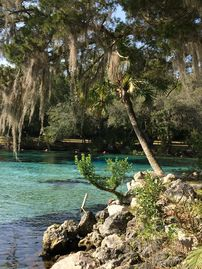 Salt Springs, FL, USA