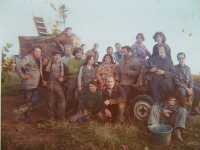 Grape Harvest 1972 - Beaumont family and friends