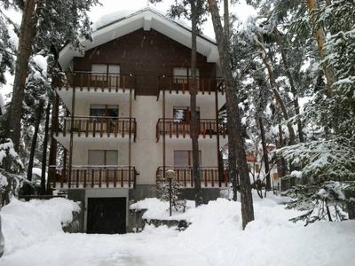 Photo for Apartment in pine forest 200 meters from the ski slopes !!!