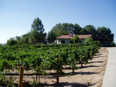 Guest House sits amongst the vines at end of private drive with two car parking.
