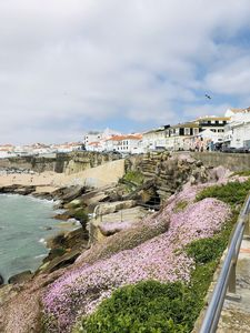Photo for Ericeira, land of water sports, fishing, gastronomy and legends.