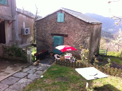 Photo for Small house in the mountains in the heart of the chestnut grove in a village