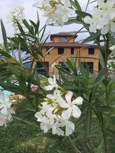 Photo for Bed and breakfast Fattoria la Lama