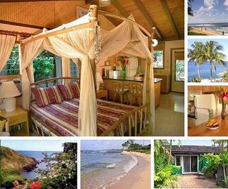 Search 10 holiday rentals