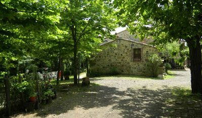 Photo for Casciano Di Murlo: House with garden