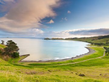 Port Jackson Beach, Port Jackson, New Zealand