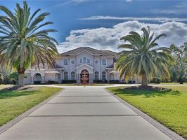Photo for 5BR House Vacation Rental in Tarpon Springs, Florida