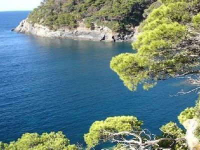 Photo for Hyeres beaches - ideal giens island peninsula sea in small port