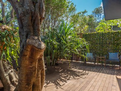 Photo for Wattle Street Beach House