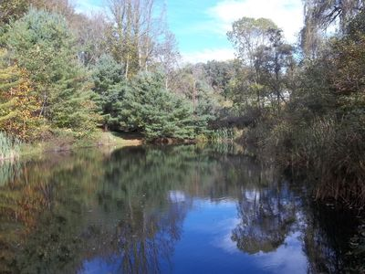 The Pond in early fall