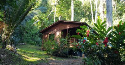 Photo for Escape to the Belizean Jungle in an Off Grid Village