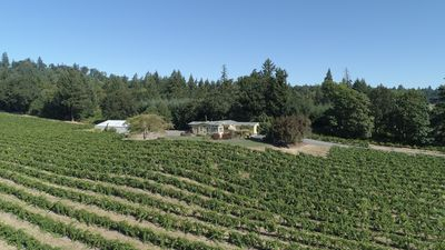 Photo for Wine Country Getaway on a Working Vineyard!
