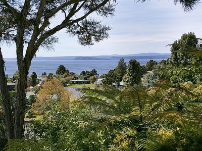 Ocean Views from Lake Cottage with Wifi and Pet friendly - Pukawa Holiday Home