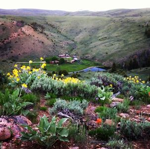 Ranch with flowers