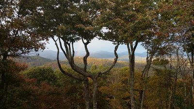 Photo for Cool Breezes at 4600 ft, Long Range Views, Close to ASU and Downtown Boone