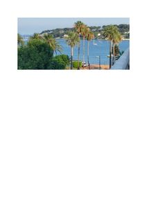 Photo for Perfect apartment in central Antibes