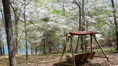 Photo for War Eagle Lake House Amazing 50 Acre Estate, 180 Lake Front, Boat Access, Easy Slope
