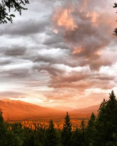 Photo for The ultimate Montana experience~AMAZING VIEWS, close to town, 20 private acres!