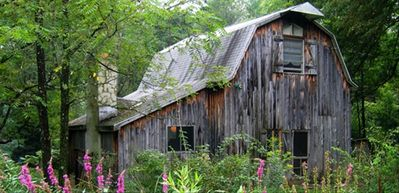 Photo for Beautiful Barn on 7 Acres with Pond- Get Away from it All