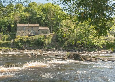 River Run Cottage from the  opposite bank of the swift flowing River Tees