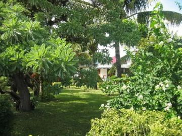 Villa in a tropical garden- GREAT DISCOUNT, 350 INSTEAD OF 490