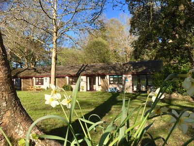 Photo for St Ives, Cornwall, small lodge, sleeps 4, self catering, on wooded holiday park.