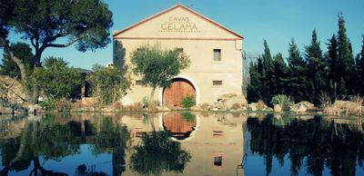 Photo for Heritage masia in the midst of historic vineyard