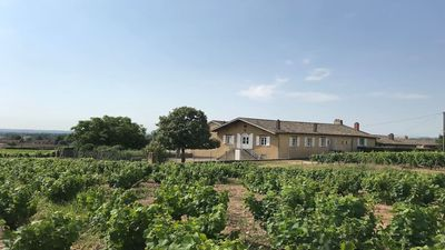 Photo for Haut oak cottage in the heart of the Beaujolais vineyards