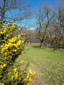 Photo for A 2 bedroom self catering cabin set in 20 acres of north Devon countryside!