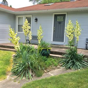 Photo for Newly Remodeled 2bd cottage