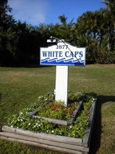 Photo for White Caps #3. Gulf-Front Cottage Complex. Views!