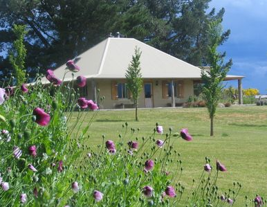 Photo for Charming Mudbrick Country Cottage