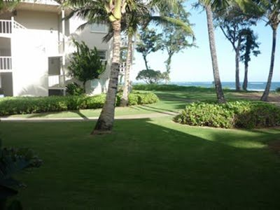 View from lanai looking straight.