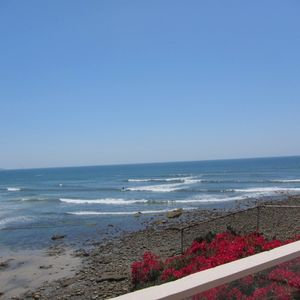 Photo for Oceanfront Tropical Paradise At The Beach Of Beautiful La Jolla