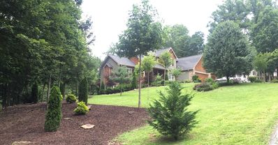 Photo for 2000 sq ft Private Dedicated Guest Suite/Floor 5 Miles From Downtown Asheville.