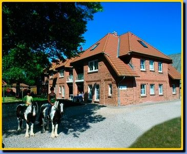 Photo for Apartment / app. for 7 guests with 70m² in Fehmarn OT Presen (13291)